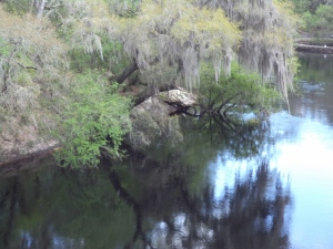 A Stop at the Suwanee Head Springs to look at the river