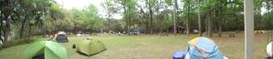 Around the park
